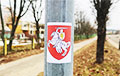 «Наша сімволіка будзе на кожным муры!»: Смелая акцыя партызан з Ангарскай
