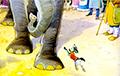 Эксперт об ультиматуме ЕЭК Таракану: Слон развернул хобот и дунул на Моську
