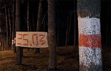 Партизаны из поселка Сосны провели дерзкую акцию против лукашистов