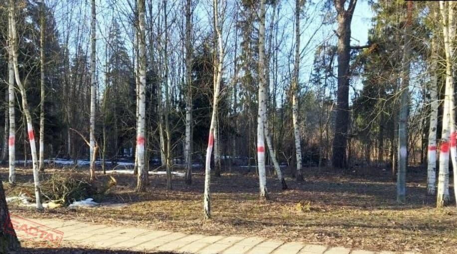 Белорусские партизаны взяли под контроль село под Могилевом1