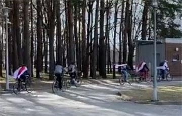 Белорусы Белостока провели бело-красно-белый авто и велопробег
