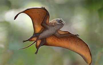 Ученые открыли новый вид мелкого динозавра, похожего на существ из «Звездных войн»