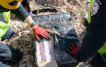Польские таможенники нашли семь тысяч пачек сигарет в поезде из Беларуси