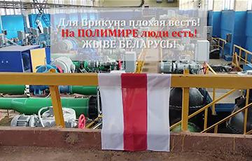 Video Fact: White-Red-White Flag At Palimir Enterprise