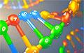 Ученые разгадали генетическую тайну первых европейцев