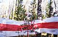 Барысаўскія партызаны з самай раніцы правялі дзёрзкую суботнюю акцыю