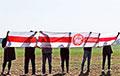В Беларуси прошли воскресные акции протеста