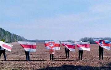 Жители Борисова и Бреста вышли на акции против лукашизма