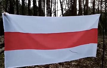 Партизаны Речицы провели акцию с бело-красно-белым флагом