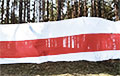Rally With Giant White-Red-White-Flag Held At Minsk Sea