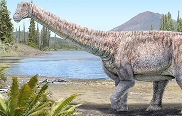 «Кости Атакамы»: в Чили открыли новый вид титанозавра