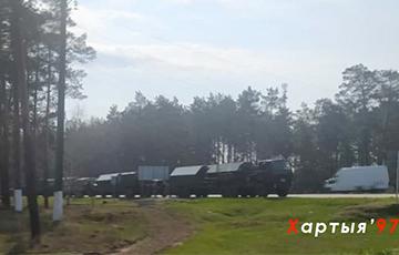 На границе Беларуси с Украиной заметили скопления военной техники