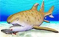 Ученые дали название похожей на дракона акуле возрастом 300 миллионов лет
