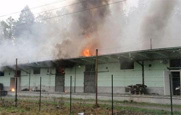 Чехия не рассматривает других версий взрывов боеприпасов, кроме действий России