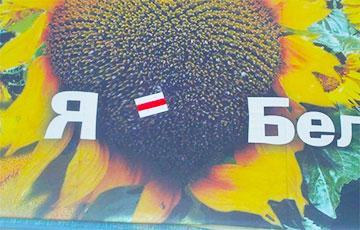 Белорусские партизаны добавили «изюминку» на плакаты возле МКАД