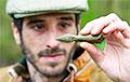 В Британии в Шервудском лесу нашли «стрелу Робина Гуда»