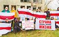 «Время пришло: остановим Таракана забастовкой!»