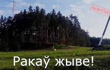 Партизаны Ракова вывесили национальный флаг