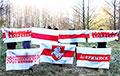 Партизаны Новополоцка: Победа народа, а лукавый просто вор