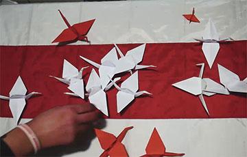 Витебские дворы провели флешмоб с тысячей бумажных журавлей