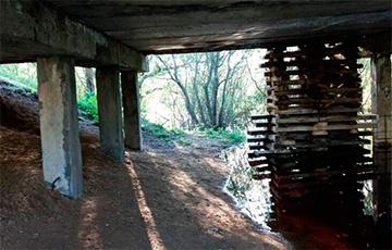 В Рогачевском районе мост подперли шпалами