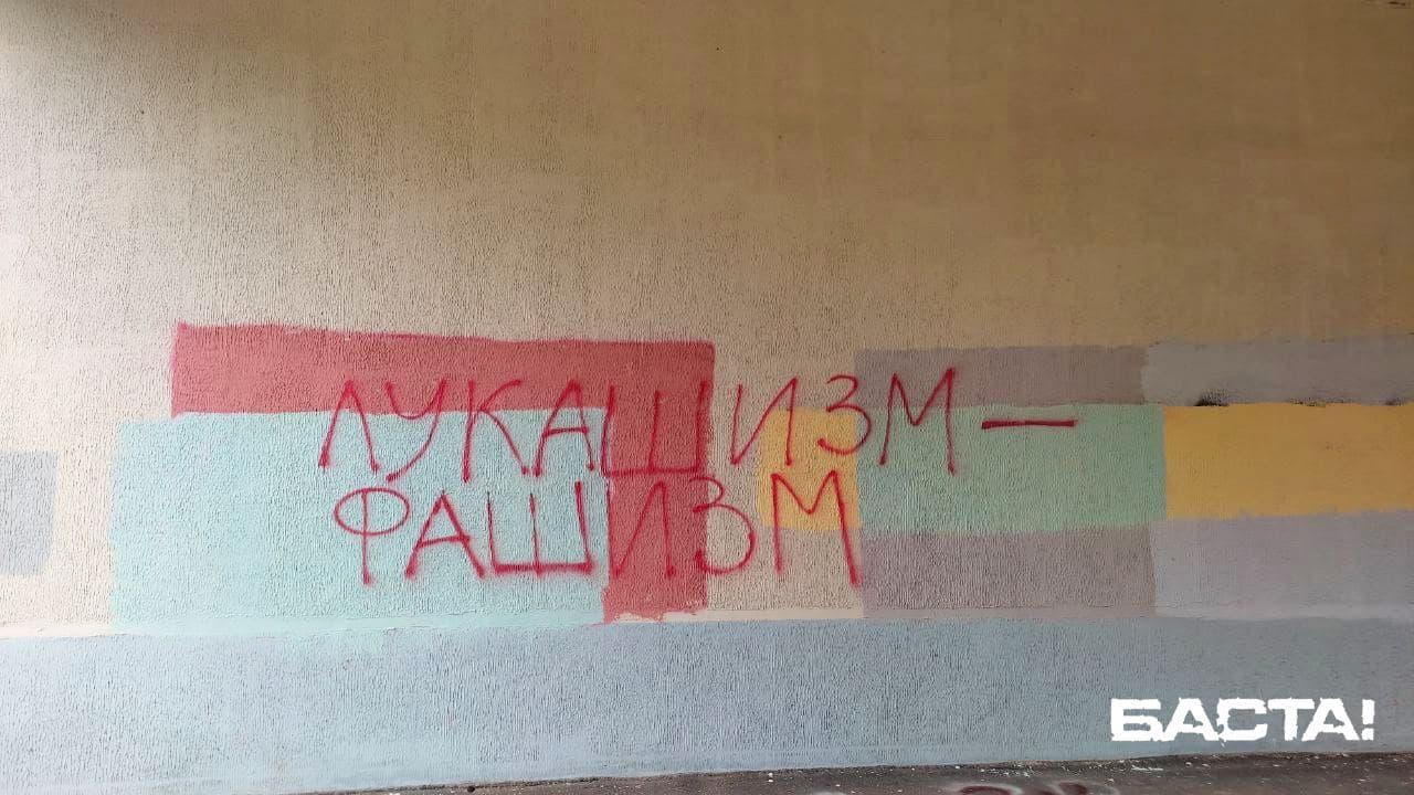 Партизаны Дзержинска вышли на бело-красно-белую акцию1