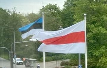 Бело-красно-белый флаг подняли в Таллинне0