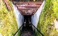 В Польше найден предположительно ведущий в Янтарную комнату подземный тоннель
