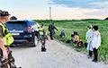 Литва готовит жесткие меры в связи с нелегальной миграцией из Беларуси