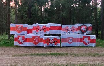 Белорусские партизаны: Требуем признать режим Таракана террористическим