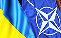 Байден назвал условия вступления Украины в НАТО