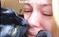 Кот успокоил расстроенную хозяйку и стал звездой Сети