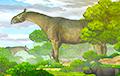 Ученые нашли в Китае окаменелости гигантского древнего носорога