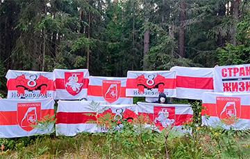 Белорусы провели ряд партизанский акций протеста