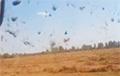 В Ганцевичский район пришли пыльные вихри