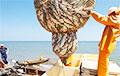 Министр рыболовства Норвегии рассказал о вреде «таракана»