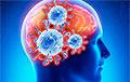 Ученые обнаружили влияние коронавируса на интеллект человека