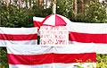Пенсионеры вышли на акцию под бело-красно-белым флагом
