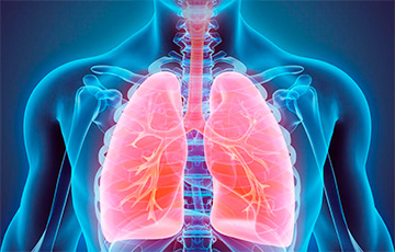 В Беларуси заметно увеличилось количество заболеваний органов дыхания
