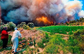 Турецкий министр: Мы справились с большинством пожаров