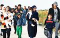 Frontex: Мигрантов до границы Беларуси с Литвой сопровождает ведомственный автомобиль