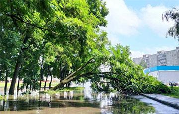 Сильный дождь затопил Барановичи: фото