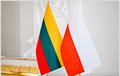 Польша и Литва призывают ЕС жестко ответить на гибридную угрозу Лукашенко