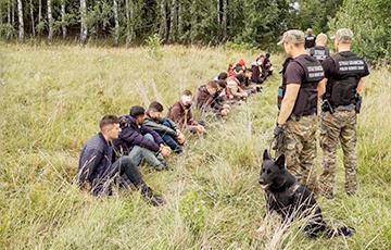 Польскую границу с территории Беларуси штурмовало рекордное число нелегалов