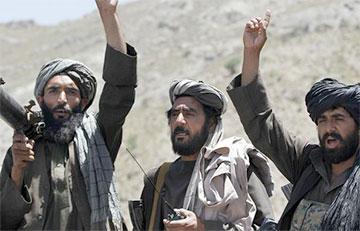 Талибы заявили о нежелании принимать власть от президента Афганистана