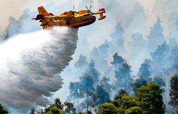 В Турции потушили все лесные пожары
