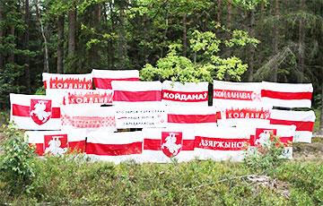 Партизаны Дзержинска вышли на бело-красно-белую акцию