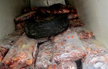 В России уничтожили более 12 тонн мяса и рыбы из Беларуси
