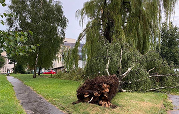 Belarus Caught a Real Storm: Power Outages in the Cities, Wind Blows Down the Roofs
