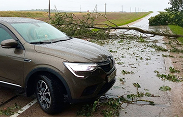 Как семья из Заславля выехала покататься и попала в ураган: видео